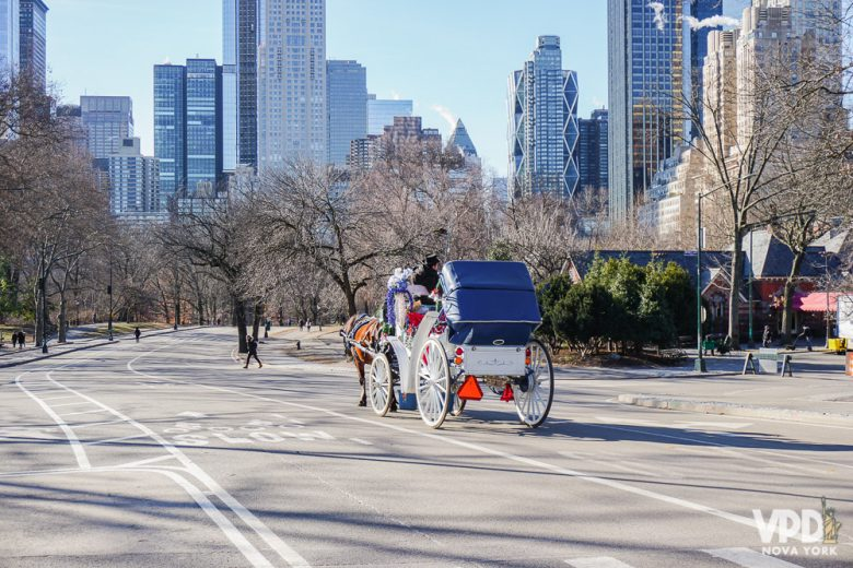 Foto de uma das carruagens do Central Park, puxada por cavalos, durante o passeio pelo parque