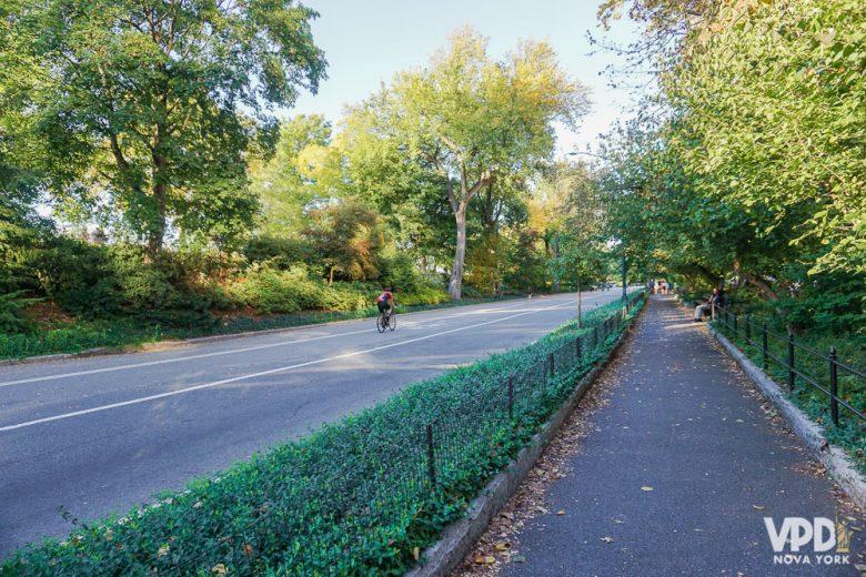 O clima em outubro é ameno, mas a lotação e o preço aumentam. Foto das árvores bem verdes em um parque