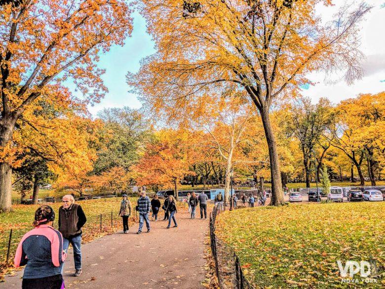 A decisão da época da viagem afeta vários aspectos do roteiro. Foto de Nova York no outono, com as árvores do Central Park em tons de amarelo e laranja