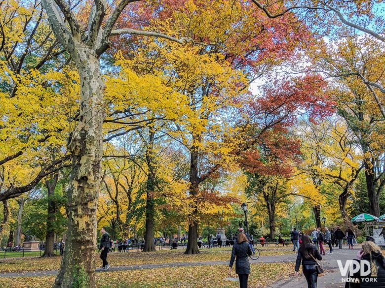 A temperatura muda e toda a paisagem da cidade também! Foto de Nova York no outono, com as árvores do Central Park em tons de amarelo, vermelho e laranja